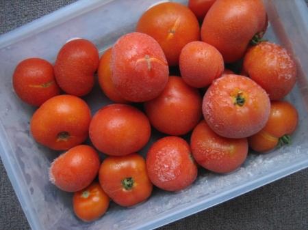 tomatoes 004